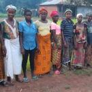 Timbo Village Farmers Group