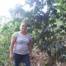 Zulay