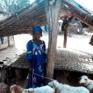 Pewal  Dialacoumbi Group