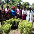 Marie's Best Female Farmers Group