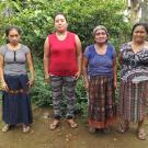 Grupo Solidaria Sector Campo Group