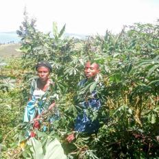 Famille Kubanabantu Group