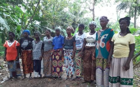 photo of Isatu's Best Female Farmers Group