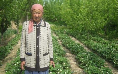 photo of Kanygul