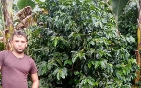 photo of Brayner Auxilio
