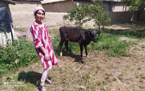 photo of Nodira