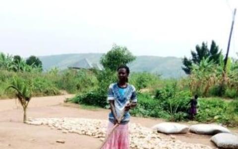 photo of Shallot