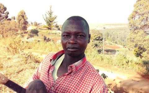 photo of Matui