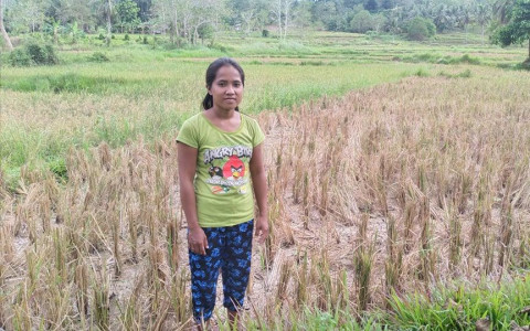 photo of Mechie
