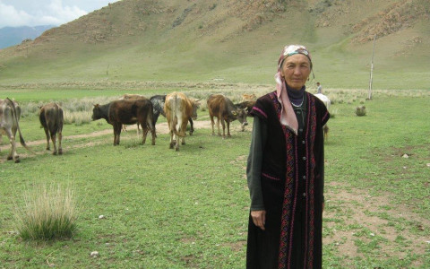 photo of Asylkan