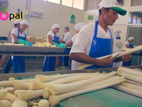 photo of Cooperativa Apropal