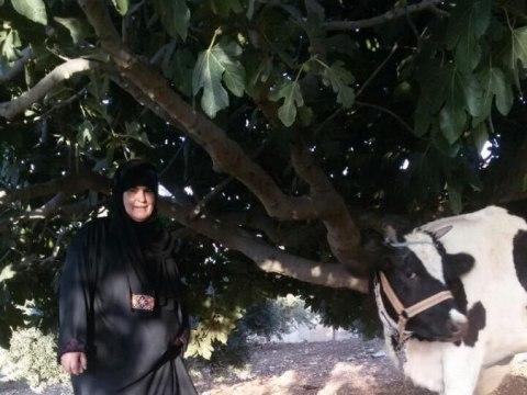 photo of Raheelah