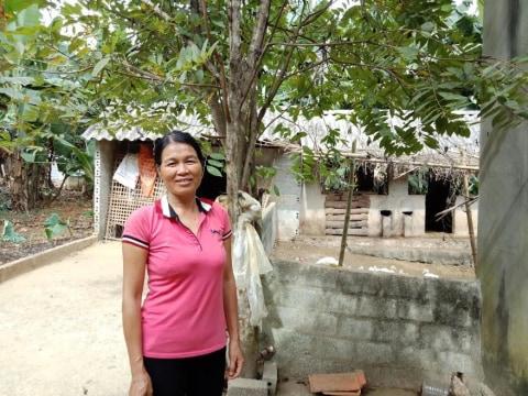 photo of Dân