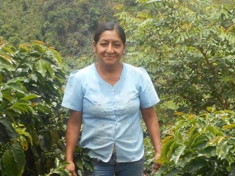 photo of María Cleotilde