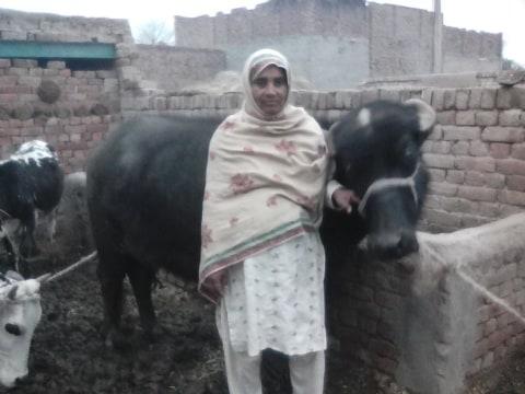 photo of Bashiran