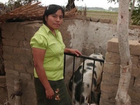 photo of Betty Rosana