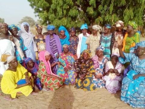 photo of Dl_Diakael Group
