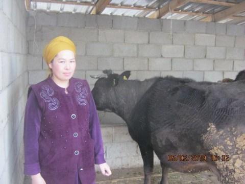 photo of Gulnaz