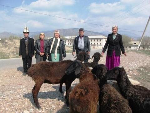 photo of Nurila's Group