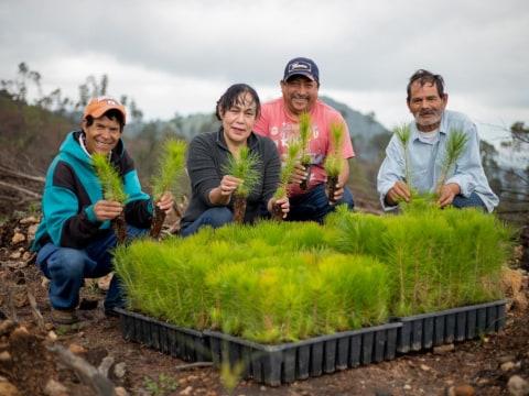 photo of Cerro Viejo Group