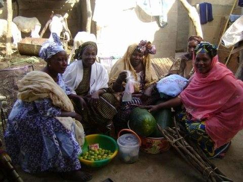 photo of Balel Group