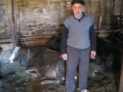 photo of Sardar