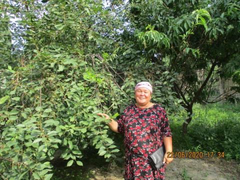 photo of Zuura