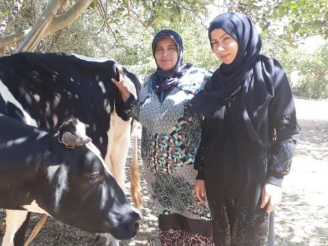 photo of Al Zahraa 1 Group