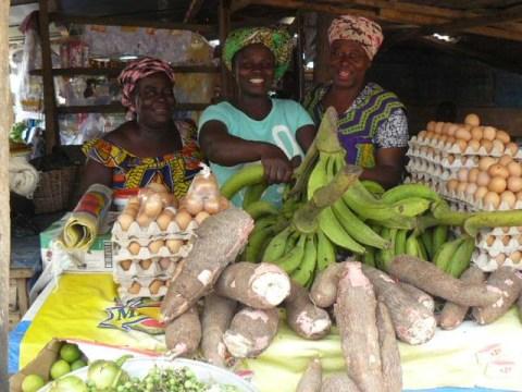 photo of Nkwa Traders Group