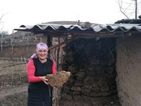 photo of Dilkayir