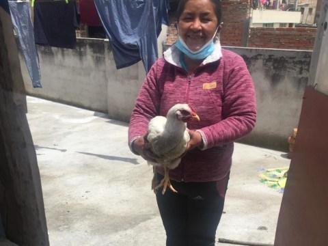photo of Amada Del Rocio