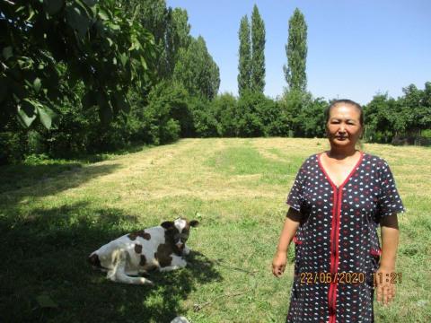 photo of Seydekan