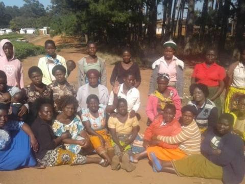 photo of Tizikondana Group