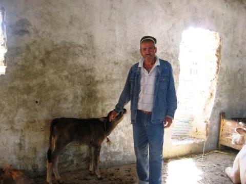 photo of Abduzoir