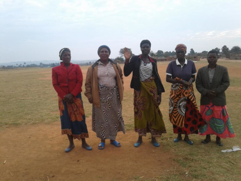 photo of Michedwe 1 Group