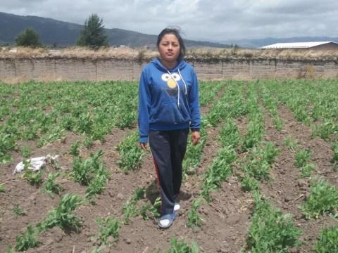 photo of Lisbeth Alejandra