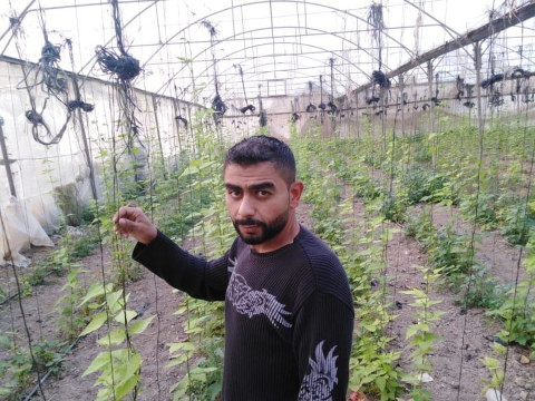 photo of Abed Allatef