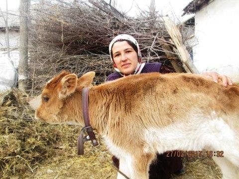 photo of Bibigul
