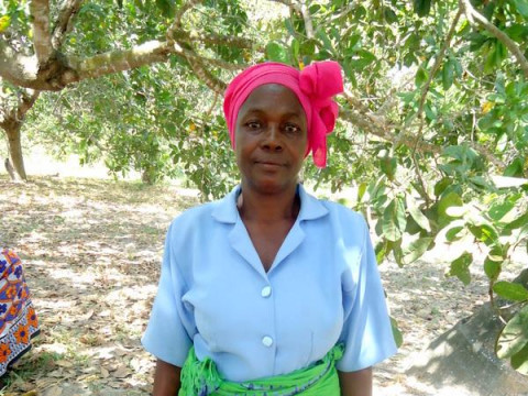 photo of Maselina