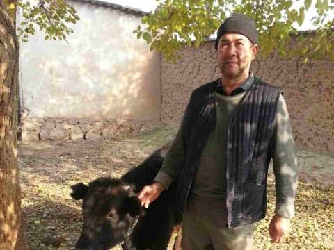 photo of Islomudin