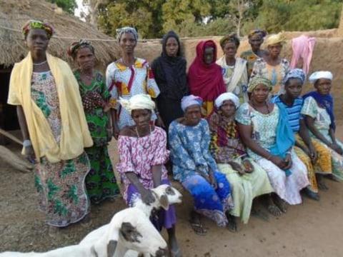 photo of Diekafo Group