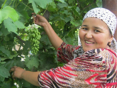 photo of Gulkhan