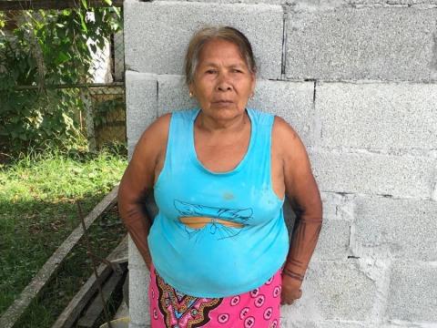 photo of Limbania