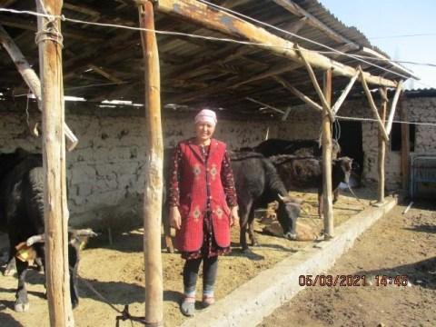photo of Parida