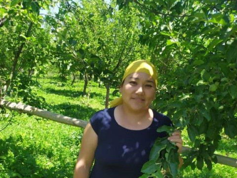 photo of Aiperi