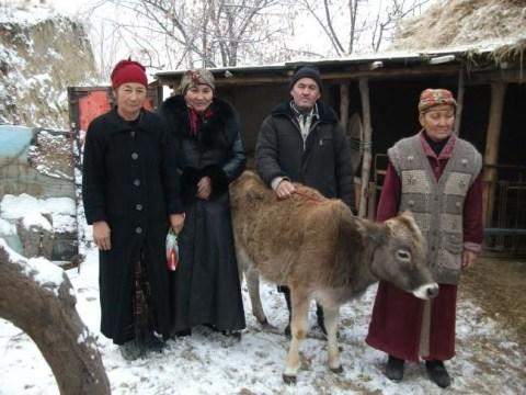 photo of Tilebat's Group