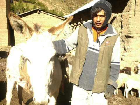 photo of Walberto