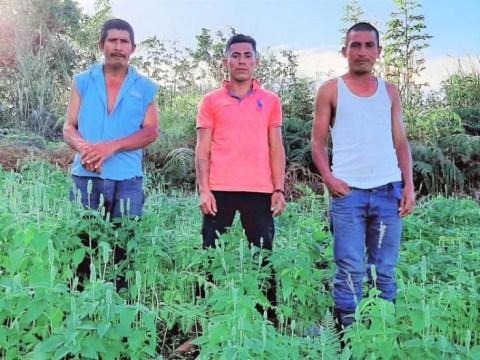 photo of Los Tigres De Maquengales Group