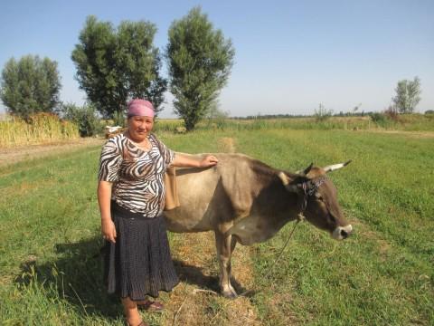 photo of Zyinat