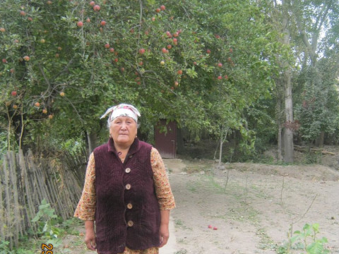 photo of Pazilat